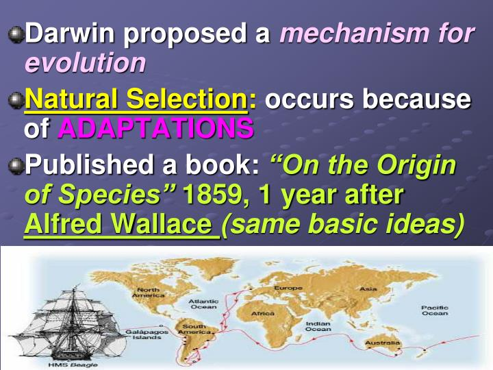 Darwin proposed