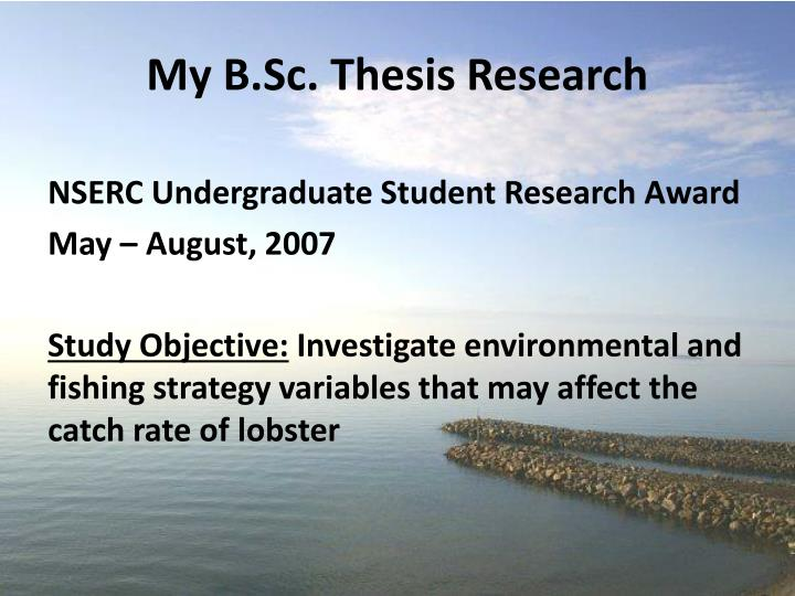 nserc thesis award Nserc undergraduate student research awards to do thesis research during the term of the award their usra before awards are actually confirmed by nserc.