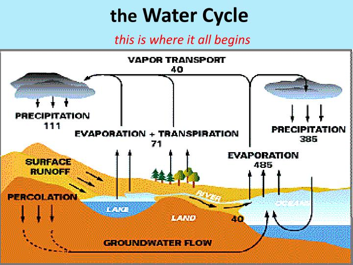 Ppt the water cycle powerpoint presentation id2297322 the water cycle ccuart Gallery