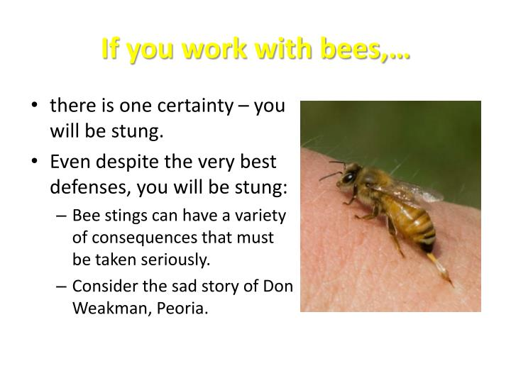 If you work with bees