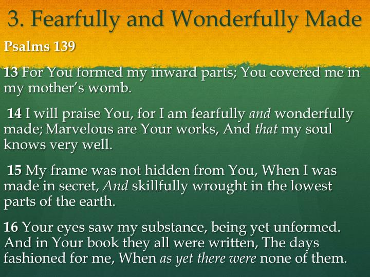 3. Fearfully and Wonderfully Made