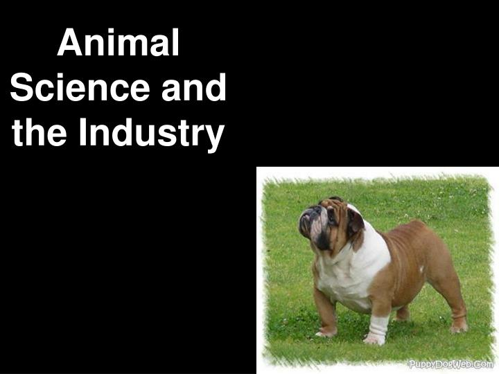 animal science and the industry n.