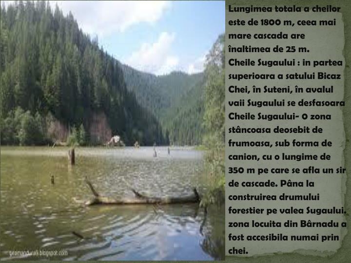 Lungimea totala a cheilor este de 1800 m, ceea mai mare cascada are înaltimea de 25
