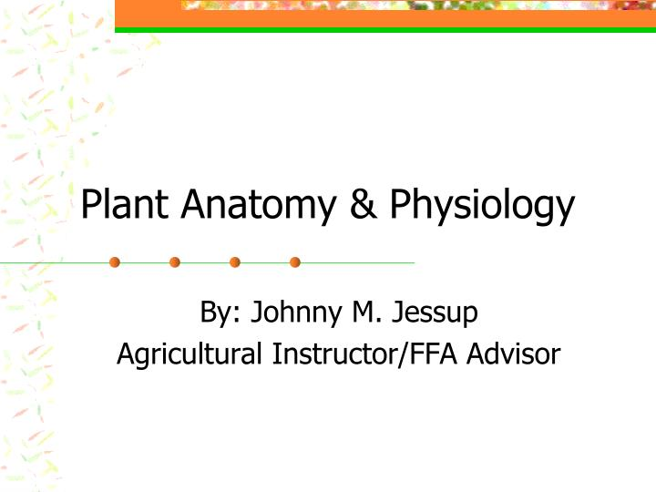 plant anatomy physiology n.