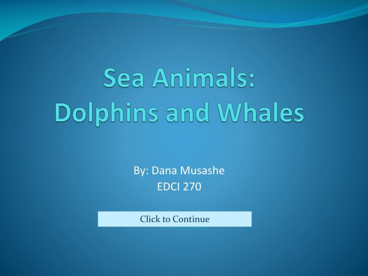 sea animals dolphins and whales n.