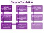 steps in translation