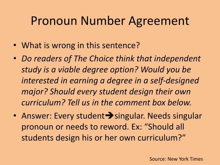 Pronoun Number Agreement