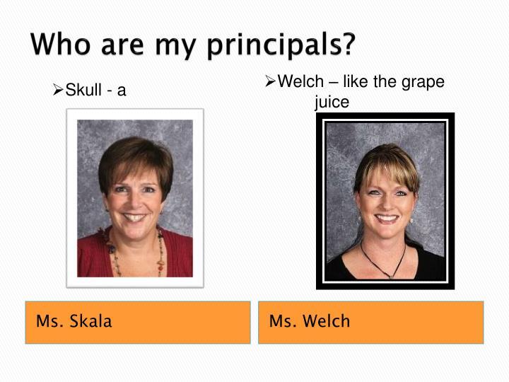 Who are my principals