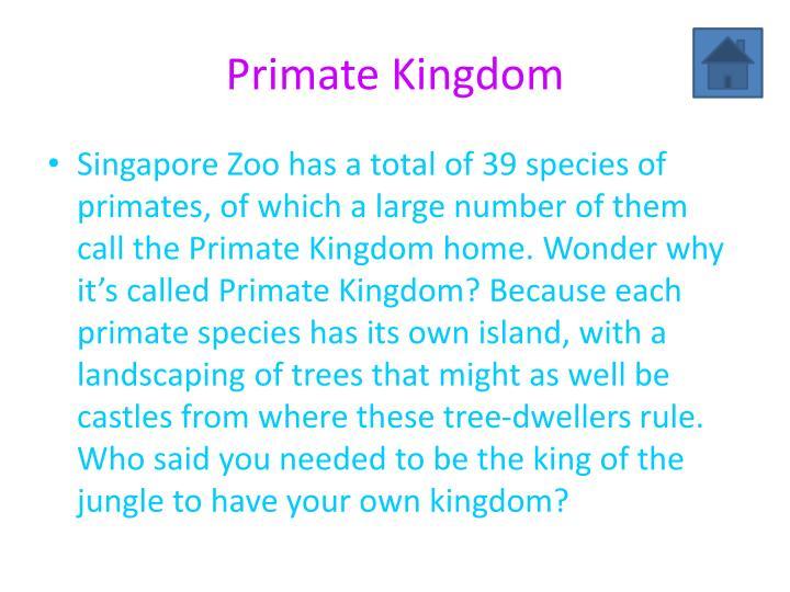 Primate Kingdom