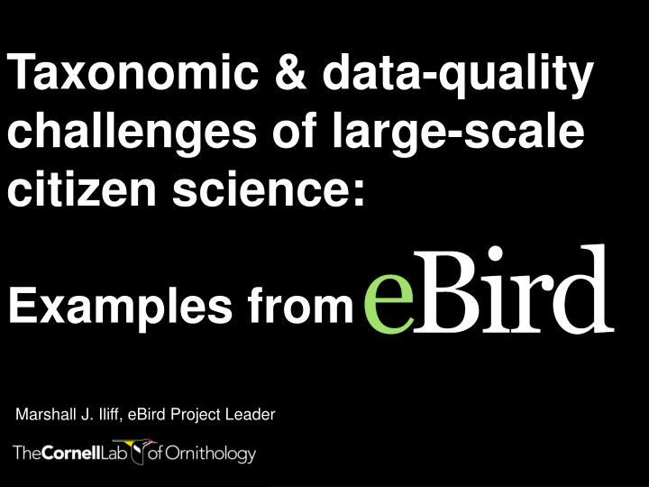 taxonomic data quality challenges of large scale citizen science examples from n.