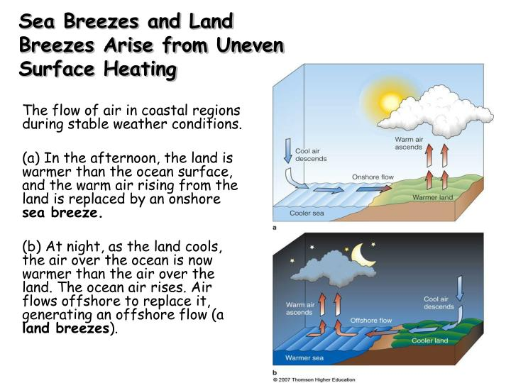 Sea Breezes and Land Breezes Arise from Uneven Surface Heating
