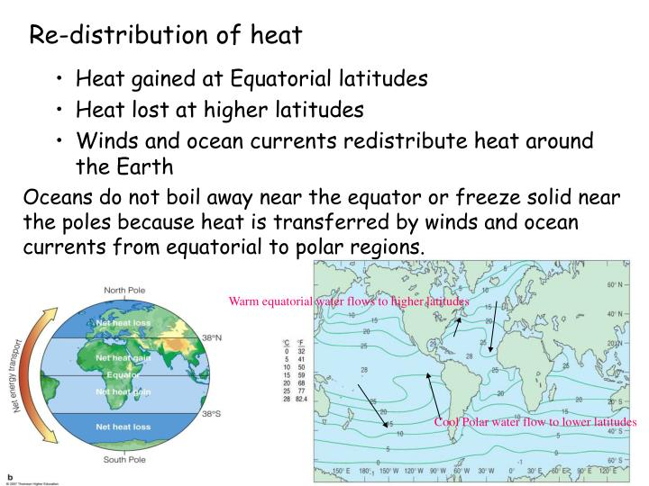 Warm equatorial water flows to higher latitudes