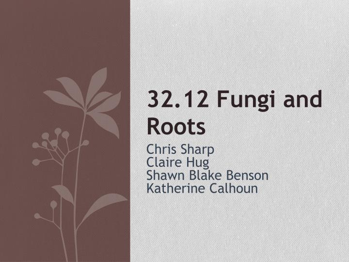 32.12 Fungi and Roots