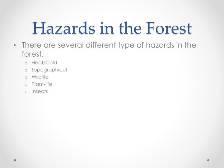 Hazards in the Forest