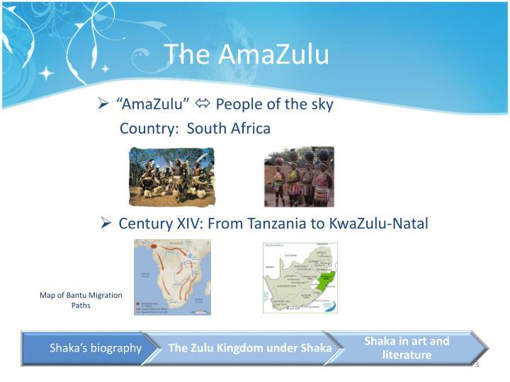 The amazulu