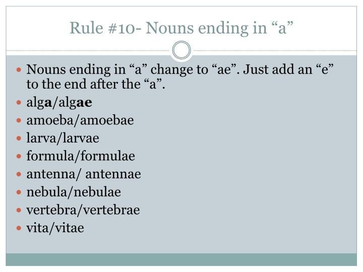 "Rule #10- Nouns ending in ""a"""