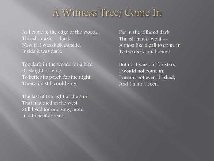 A Witness Tree/ Come In