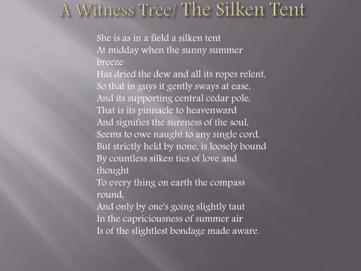 A Witness Tree/