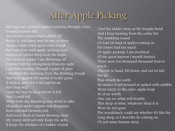 After Apple Picking
