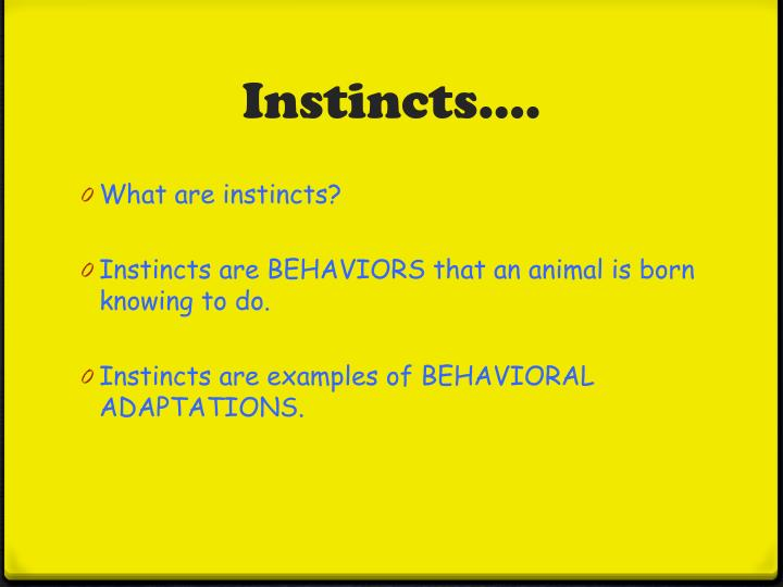 Ppt Behavioral Adaptations Powerpoint Presentation Id2307894