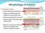 morphology of asthma1
