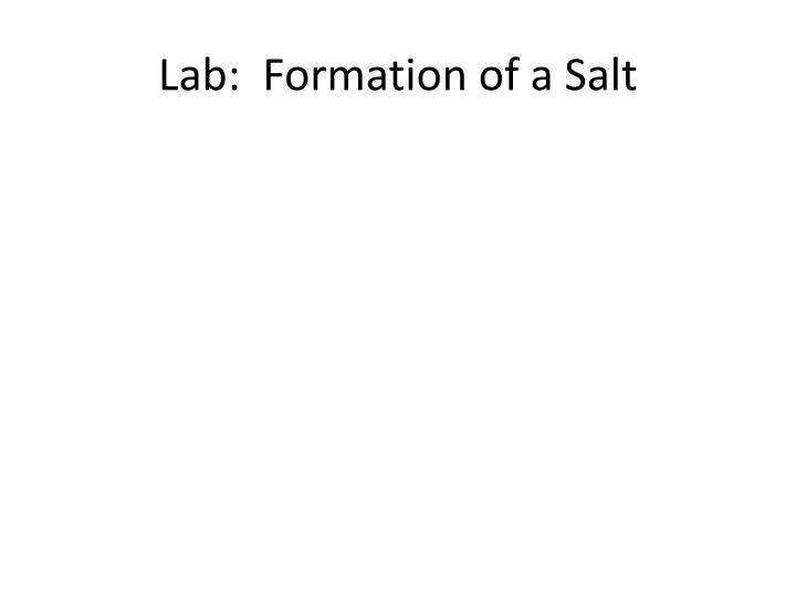 Lab:  Formation of a Salt