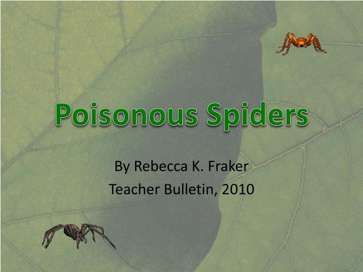 poisonous spiders n.