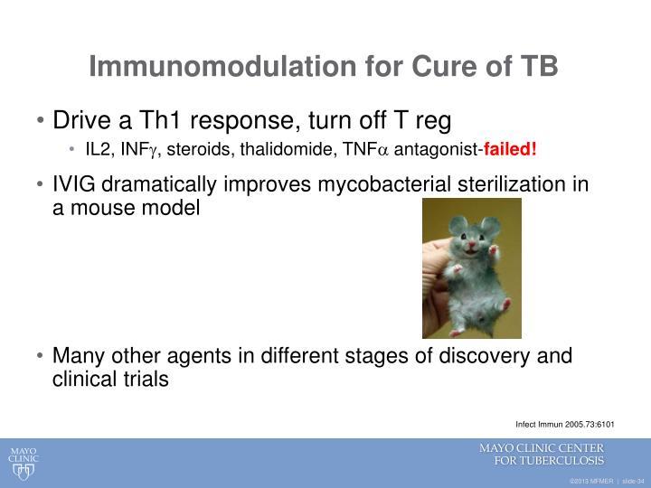 Immunomodulation for Cure of TB
