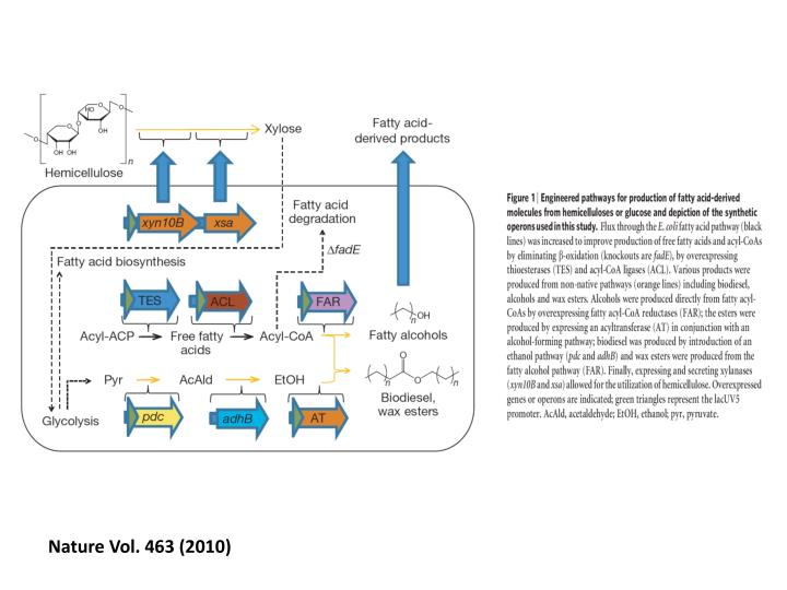 production of fatty alcohol from hydrogenation An example fatty alcohol fatty alcohols (or long-chain alcohols) are usually high-molecular-weight, straight-chain fatty alcohols are mainly used in the production of detergents and surfactants it can be produced by the hydrogenation of oleic acid esters and it has uses as a nonionic surfactant.