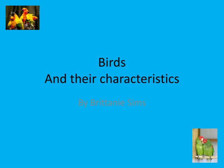birds and their characteristics n.