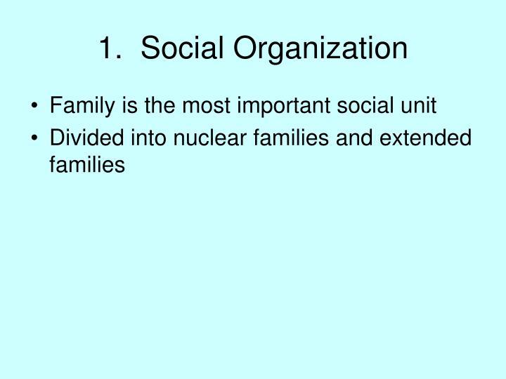 1 social organization