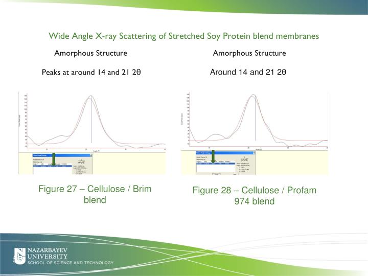 Wide Angle X-ray Scattering of Stretched Soy Protein blend membranes
