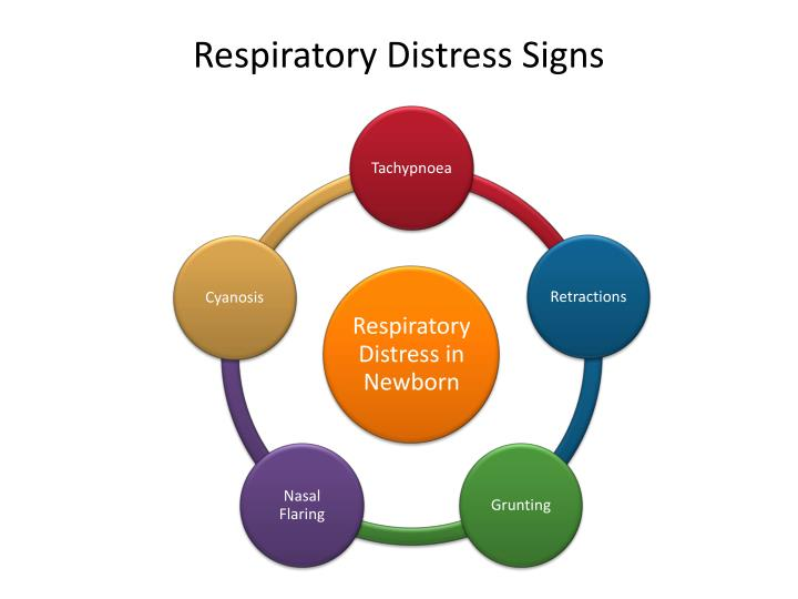 respiratory distress in newborn Respiratory distress syndrome (rds) is a relatively common condition resulting from insufficient production of surfactant that occurs in preterm neonates on imaging, the condition generally presents as bilateral and relatively symmetric diffus.