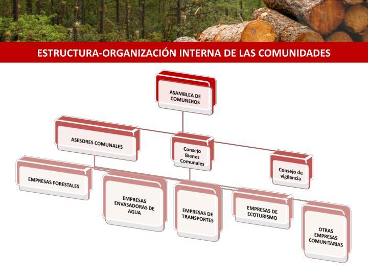 ESTRUCTURA-ORGANIZACIÓN INTERNA DE LAS COMUNIDADES