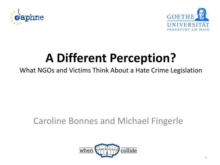 a different perception what ngos and victims think about a hate crime legislation n.