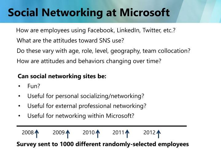Social Networking at Microsoft