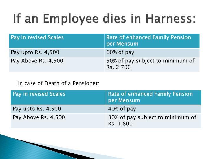 If an Employee dies in Harness: