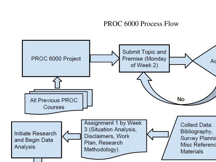 PROC 6000 Process Flow