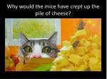 why would the mice have crept up the pile of cheese