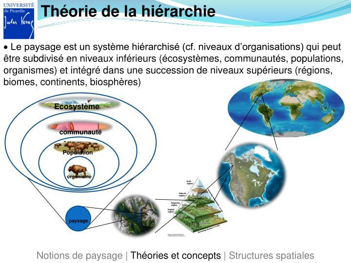 Théorie de la hiérarchie
