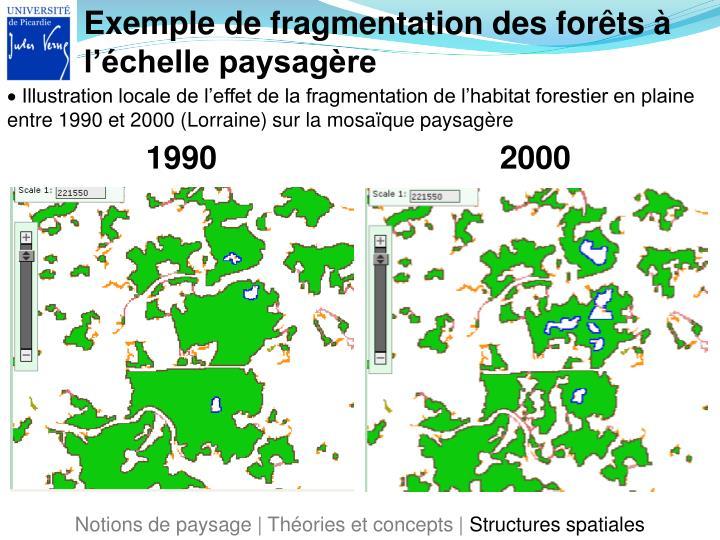Exemple de fragmentation des forêts à l'échelle paysagère