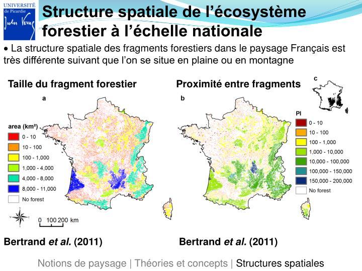 Structure spatiale de l'écosystème forestier à l'échelle nationale