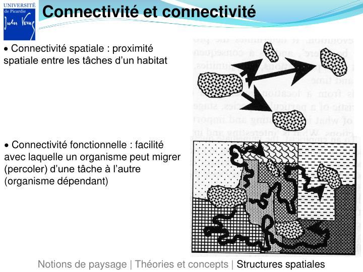 Connectivité et connectivité