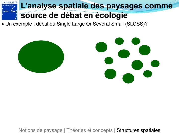 L'analyse spatiale des paysages comme source de débat en écologie
