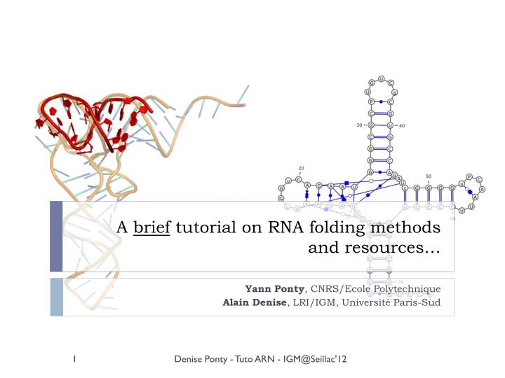 a brief tutorial on rna folding methods and resources n.