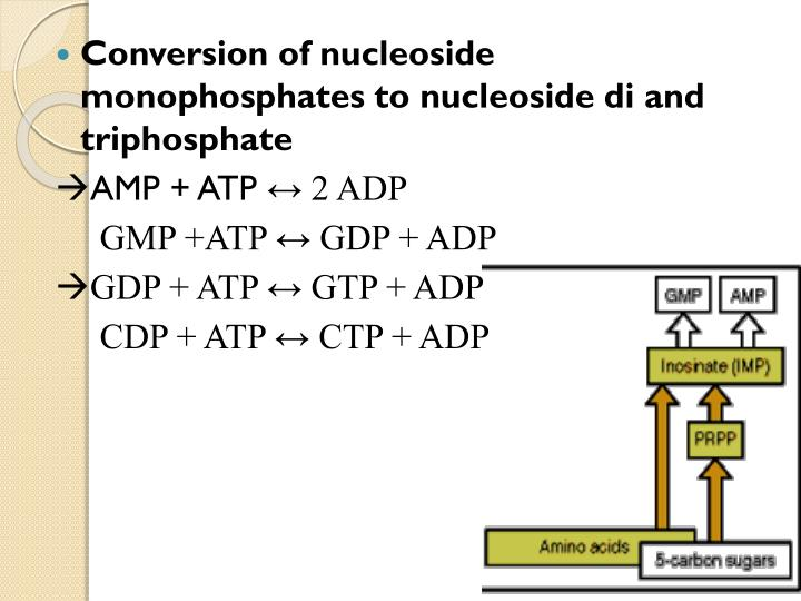 Conversion of nucleoside