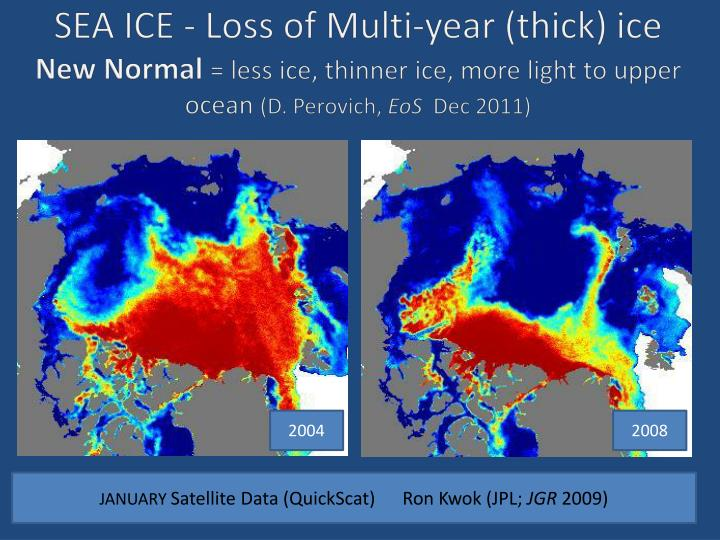 SEA ICE - Loss of Multi-year (thick)
