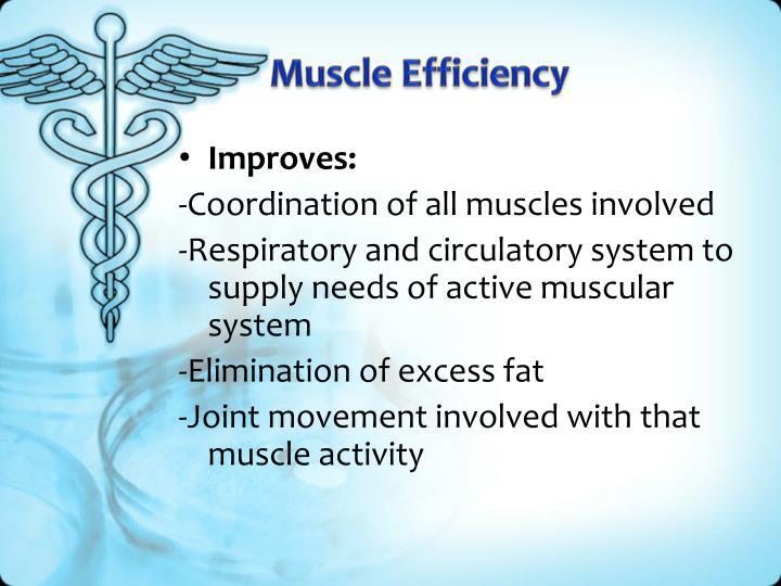 Muscle Efficiency