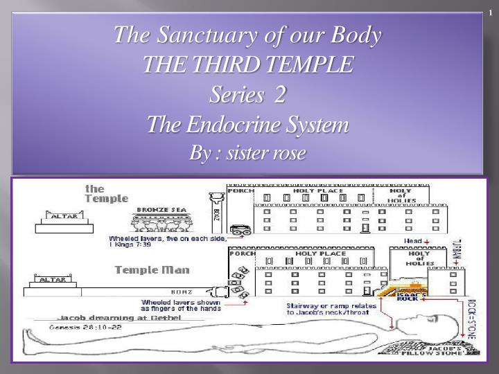 the sanctuary of our body the third temple series 2 the endocrine system by sister rose n.