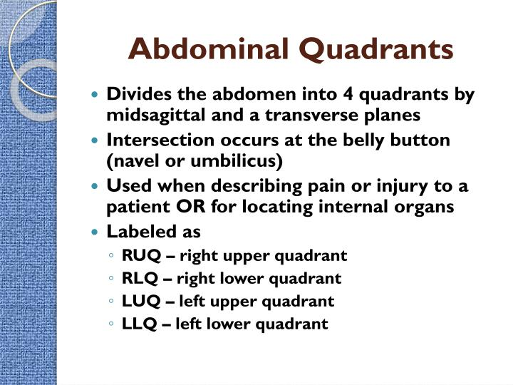 Ppt intro to the human body directional terms planes quadrants abdominal quadrants ccuart Choice Image